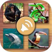 动物的声音为孩子 - 丛林,农场,海洋动物和宠物 1.2