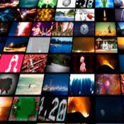 视频分发 2.0.4