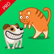 猫狗叫声模拟器 -  宠物猫咪小狗声音沟通效果翻译 1