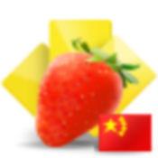 水果蔬菜卡片 (中文)