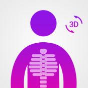 解剖学 简单 : 学习 肌肉 , 骨架 和 骨头 神经 1