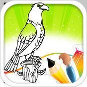 鸟图画书 3.3