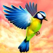 飞翔的小鸟3D-飞...