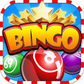 Bingo Present -...