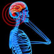 电磁辐射生存知识百科:快速自学参考指南和教程视频 1