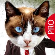 Animal Face Pro  1.3