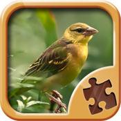 鸟益智游戏 - 拼图游 1.3