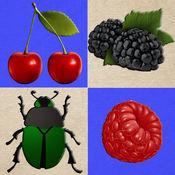 浆果和甲虫。采集野果,不要触摸甲虫! (Berries and Bugs. Collect berries and do not touch the bugs!)
