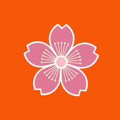 GOHAN - 日本餐厅 1.3