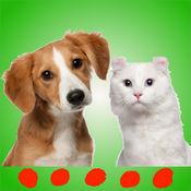 猫与狗的声音: 完美的软件,为宠物和小狗
