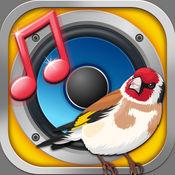 鸟声音铃声 – 免費手機鈴聲和放鬆音樂,鳥叫聲和鸣叫 1