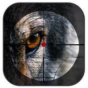 黑森林动物狩猎 - 射击在密林战争 1