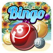 Bingo Paradise Vacation  1.0.0