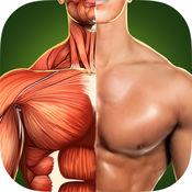 人体解剖学3D - 骨骼和肌肉 7.1.1