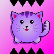 有弹性的小猫 (Bouncy Kitty!)