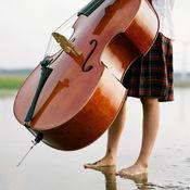 大提琴音乐高清壁纸收藏图库:个性名言主题背景 1