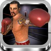 拳击3D战斗游戏 1
