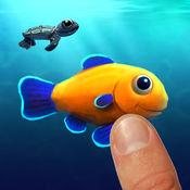 有趣的鱼游戏 - Funny Fish Game