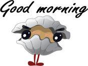 Cartoon Shell贴纸,设计:wpitipong