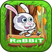 兔子丛林之旅