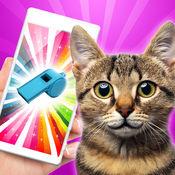 猫哨子训练 - 超声模拟器