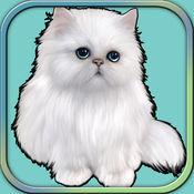 可爱的猫小猫运行 - 模拟游戏2017年 1