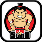 King Of Sumo Wrestler Game