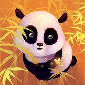 熊猫高清壁纸收藏图库-个性名言主题背景