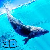 蓝鲸模拟器3D 1