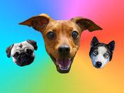 iMessage的狗贴  1.2