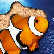 海生动物拼图...