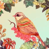 涂色花园—涂鸦绘画我的秘密魔法森林2017 1.01