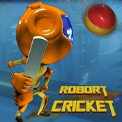 盛大的机器人板球比赛 - 4399小游戏下载主题qq大厅捕鱼达人手机斗地主欢乐7k7k双大全免费单机炫舞腾迅冒险类安卓切水果