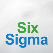 6西格玛指导专业词典和记忆卡片|视频词汇教程