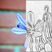 素描大师 专业版 - 一键铅笔画特效