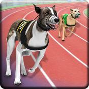 灰狗德比狗赛车 - 野狗3d模拟器