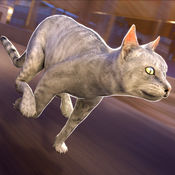 卡通 猫 狗 决战喵星 大战 模拟器  1.0.0