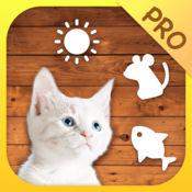 逗猫神器(Cat Mate Pro) 1.6