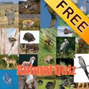 动物测验®免费 1
