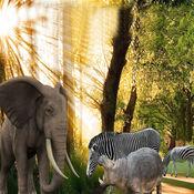 丛林动物攻击大象模拟器游戏