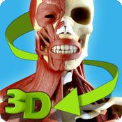 易解剖 3D 4