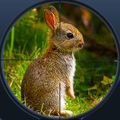 丛林兔狩猎3D亲极端猎人2017年 1.1