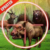 丛林狙击手狩猎  猎杀野生丛林动物