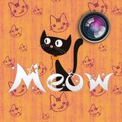 Meow Pics – 猫贴纸和相框 & 的精美相框及贴纸