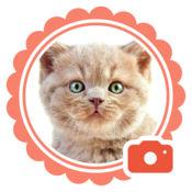 宠物相机 - 给你的宠物加上可爱表情和激萌贴纸 1