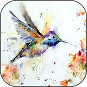 素描涂鸦艺术 - 艺术潦草|简单的绘图应用与学习如何绘制的东西垫在为孩子们