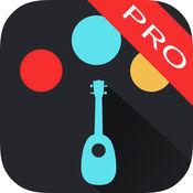 专业尤克里里调音器 - ep ukulele tuner PRO 1
