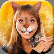 猫女 照片 - 可爱的 猫咪 变脸 和 动物 图片 蒙太奇 1