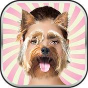 动物 头 照片 蒙太奇 - 搞笑 的脸 图片 编辑器 同 最好的 贴纸
