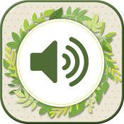 性质 铃声 - 放松 声音 和 免费 声